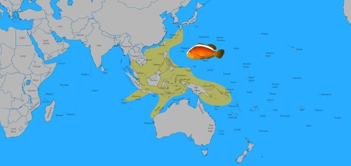 sandaracinos-map